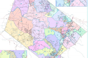Image of Hays County Precincts